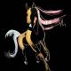 Shimmer horse